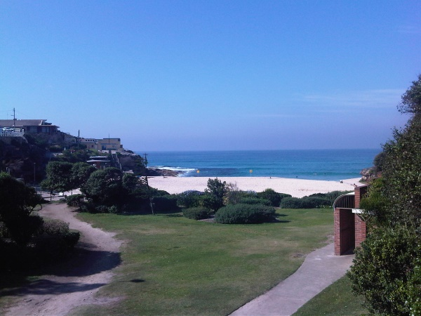 A few weeks ago, before construction started, tamarama park and old toilets in the corner...