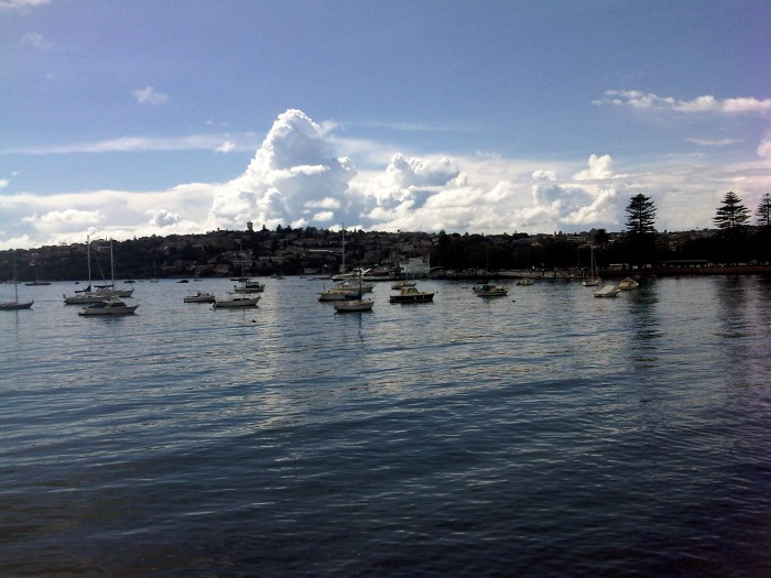 Beautiful Rose Bay